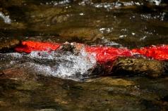 Flussi-Panta rei. Scultura ambientale sul fiume Crati (particolare) 2017